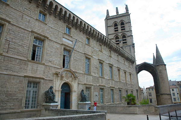 A French universities in Montpellier France